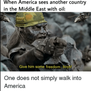 America when they see oil:: When America sees another country  in the Middle East with oil:  Give him some freedom, boys!  One does not simply walk into  America America when they see oil: