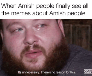25+ Best Amish Memes | the Memes, I Want Memes, That Memes