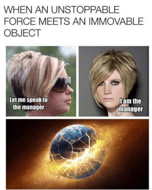 Dank, 🤖, and Force: WHEN AN UNSTOPPABLE  FORCE MEETS AN IMMOVABLE  OBJECT  Let me speak to  the manager  am the  manager
