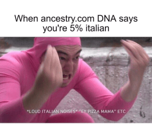 "Bring the pizza Mario.: When ancestry.com DNA says  you're 5% italian  *LOUD ITALIAN NOISES ""EY PIZZA MAMA"" ETC Bring the pizza Mario."