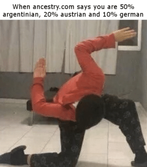 Ancestry, Dank Memes, and Argentinian: When ancestry.com says you are 50%  argentinian, 20% austrian and 10% german HAIL