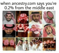 Ancestry, The Middle, and ancestry.com: when ancestry.com says you're  0.2% from the middle east