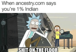 laughoutloud-club:  This put a smile in my face: When ancestry.com says  you're 1% Indian  SHIT ON THE FLOOR laughoutloud-club:  This put a smile in my face
