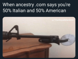 Me🍕irl: When ancestry .com says you're  50% Italian and 50% American  /TheRoyalManbird Me🍕irl