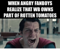 Tag your friends!😂❤️ || follow @spidermanmemes - - - justiceleague superman captainamerica batman wonderwoman arrow theflash gotham spiderman batmanvsuperman comicbookmemes justiceleaguememes avengers avengersmemes deadpool dccomics dcmemes dccomicsmemes marvel marvelcomics marvelmemes starwars doctorstrange captainamericacivilwar: WHEN ANGRY FANBOYS  REALIZE THAT WBOWNS  PART OF ROTTEN TOMATOES  Via Comic. Book Memes IG Tag your friends!😂❤️ || follow @spidermanmemes - - - justiceleague superman captainamerica batman wonderwoman arrow theflash gotham spiderman batmanvsuperman comicbookmemes justiceleaguememes avengers avengersmemes deadpool dccomics dcmemes dccomicsmemes marvel marvelcomics marvelmemes starwars doctorstrange captainamericacivilwar