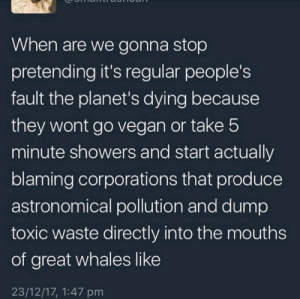 Vegan, Planets, and Whales: When are we gonna stop  pretending it's regular people's  fault the planet's dying because  they wont go vegan or take 5  minute showers and start actually  blaming corporations that produce  astronomical pollution and dump  toxic waste directly into the mouths  of great whales like  23/12/17, 1:47 pm