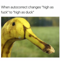 """😅😅🤔: When autocorrect changes """"high as  fuck"""" to """"high as duck"""" 😅😅🤔"""