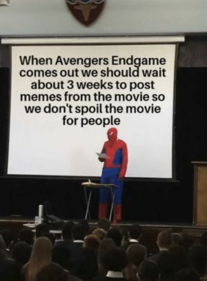 Memes, Avengers, and Movie: When Avengers Endgame  comes out we should wait  about 3 weeks to post  memes from the movie so  we don't spoil the movie  for people The hardest choices require the strongest wills