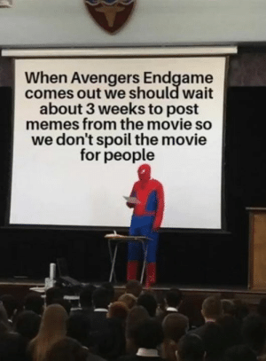 Memes, Avengers, and Movie: When Avengers Endgame  comes out we should wait  about 3 weeks to post  memes from the movie so  we don't spoil the movie  for people