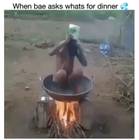 Bae, Funny, and Wtf: When bae asks whats for dinner Wtf clip of the day 😂💀