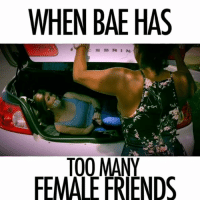 "Bae, Dating, and Friends: WHEN BAE HAS  ESRIN  TO0 MANY  FEMALE FRIENDS When Bae has too many female friends 🙅🏽🔪🚫 @cherellepatrice ft. @juhahnjones @riseandshine @your_nay @ayeyojazz (song: ""Don't Need Permission"" by @megmacmusic ) bae baecation dating datingtips kidnapped trunk crowbar beat weaves wigs yank fights girlfight girlsbelike females competition ihateyou kelis wildthoughts megmac megmacmusic selfish LIKE. COMMENT. SHARE. (Tag Bae ❤️)"