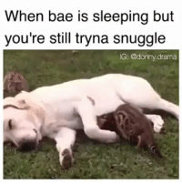 @donny.drama is changing the meme game one meme at a time 😂 his account is about to blow up!: When bae is sleeping but  you're still tryna snuggle  IG: @donny, drama @donny.drama is changing the meme game one meme at a time 😂 his account is about to blow up!