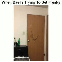 Bae, Funny, and Lol: When Bae Is Trying To Get Freaky Ayee tag bae lol