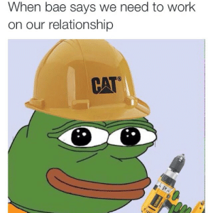 Bae, Work, and Adorable: When bae says we need to work  on our relationship  CAT This is so adorable its unreal