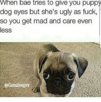 Bae, Memes, and Mood: When bae tries to give you puppy  dog eyes but she's ugly as fuck,  so you get mad and care even  less mood: uuuuuuuuugh