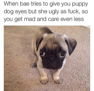 Bae, Ugly, and Fuck: When bae tries to give you puppy  dog eyes but she ugly as fuck, so  you get mad and care even less Shes pugly but shes mine😤