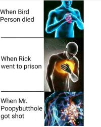 which event broke your heart the most? follow @rickmortymemes (me) for more! 🍑: When Bird  Person died  When Rick  went to prison  When Mr.  Poopy butthole  got shot which event broke your heart the most? follow @rickmortymemes (me) for more! 🍑