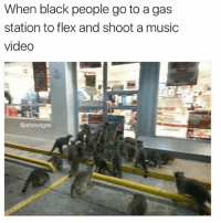 Flexing, Memes, and Music: When black people go to a gas  station to flex and shoot a music  video  @atlsavagee Blac youngsta