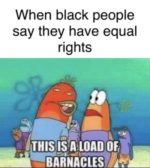 Lol, True, and Black: When black people  say they have equal  rights  THISISALOAD OF  BARNACLES Lol true