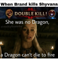 Fire, Memes, and Being Salty: When Brand kills Shyvana  DOUBLE KILL!  She was no Dragon,  salty bonobo  a Dragon can't die to fire COME OUT MY GoT FANS 💙💙💙💙💙 leagueoflegends
