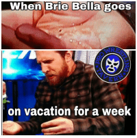 Memes, Vacation, and Brie Bella: When Brie Bella goes  on vacation for a week A man gotta do what a man gotta do  -Neo