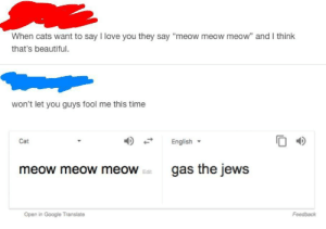 "meow meow meow: When cats want to say I love you they say ""meow meow meow"" and I think  that's beautiful.  won't let you guys fool me this time  English  O 4D  Cat  meow meow meoWgas the jews  Edit  Open in Google Translate  Feedback meow meow meow"
