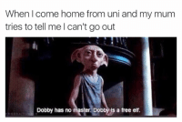 Me: When come home from uni and my mum  tries to tell me I can't go out  Dobby has no master Dobby is a free elf Me