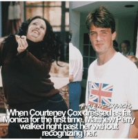 ↳ Follow @friendshqfeed (me) for more! ✨: When Courteney Cox dressed as  Monica forthe firsttime Matthew Perry  recoghizingher  walked right  past her with o  ur ↳ Follow @friendshqfeed (me) for more! ✨