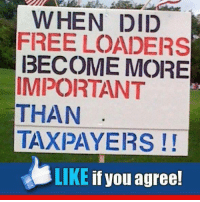 Memes, Free, and 🤖: WHEN DID  FREE LOADERS  BECOME MORE  IMPORTANT  THAN  TAXPAYERS  LIKE  if you agree!