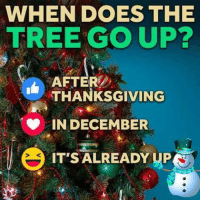 Dank, Trees, and 🤖: WHEN DOES THE  TREE GO UP?  AFTER  THANKSGIVING  IN DECEMBER  IT'S ALREADY UP #jussayin