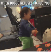 "Love, Memes, and I Love You: WHEN DOGGO REFUSES TO HUG YOU  IG: itsbubz RT @YupThatExist: ""I love you, why don't you love me back?"" https://t.co/r7eak56D7k"