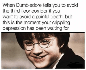 Dank, Dumbledore, and Memes: When Dumbledore tells you to avoid  the third floor corridor if you  want to avoid a painful death, but  this is the moment your crippling  depression has been waiting for Mr Potter by kegster1982 FOLLOW 4 MORE MEMES.