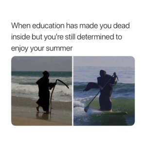 That's the spirit 😂: When education has made you dead  inside but you're still determined to  enjoy your summer That's the spirit 😂