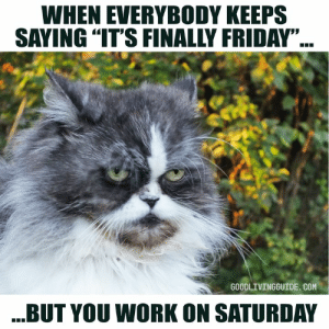 """Busy March break coming up!  Happy !: WHEN EVERYBODY KEEPS  SAYING """"IT'S FINALLY FRIDAY""""  GOODLIVINGGUIDE. COM  BUT YOU WORK ON SATURDAY Busy March break coming up!  Happy !"""