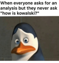 "Instagram, Memes, and Never: When everyone asks for an  analysis but they never ask  ""how is kowalski?"" ⚡️😱 @theloversayings is the most sexual account on Instagram 🍆💦"