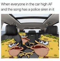 Dear rappers, stop putting sirens in your music. Sincerely, one paranoid stoner!: When everyone in the car high AF  and the song has a police siren in it Dear rappers, stop putting sirens in your music. Sincerely, one paranoid stoner!