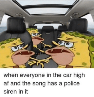 Af, Police, and Songs: when everyone in the car high  af and the song has a police  siren in it Siren songs . .