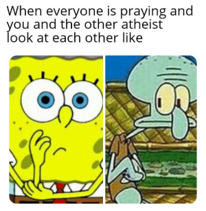 Atheist, You, and Look: When everyone is praying and  you and the other atheist  look at each other like 😬😐