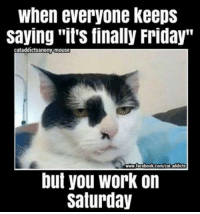 """finally friday: when everyone keeps  saving """"it's finally Friday""""  cataddictsanony-mouse  www.facebook.com/cat addicts  but you Work on  Saturday"""