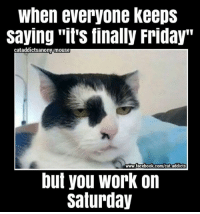 """finally friday: When everyone keeps  Saying """"it's finally Friday""""  cataddicts anony-mouse  www.facebook.com/cat addicts  but you work on  Saturday"""