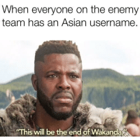 Asian, Team, and The Enemy: When everyone on the enemy  team has an Asian username.  This will be the end of Wakanda