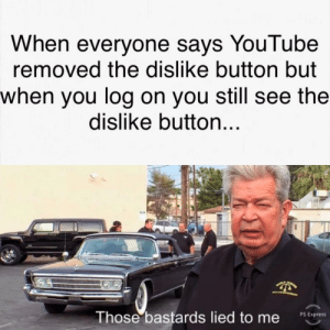 Dank, Memes, and Target: When everyone savs YouTube  removed the dislike button but  when you log on you still see the  dislike button  Those bastards lied to me  sEore I still see the dislike button. by Mighty_Woodchuck MORE MEMES