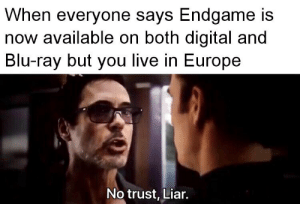"""""""What will you do?"""" – """"Wait."""": When everyone says Endgame is  now available on both digital and  Blu-ray but you live in Europe  No trust, Liar. """"What will you do?"""" – """"Wait."""""""