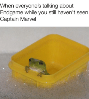 Meme, Marvel, and Captain Marvel: When everyone's talking about  Endgame while you still haven't seen  Captain Marvel Here's an innocent little meme