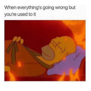 This is fine.: When everything's going wrong but  you're used to it This is fine.