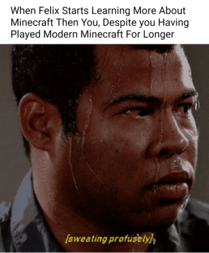 Minecraft, True, and You: When Felix Starts Learning More About  Minecraft Then You, Despite you Having  Played Modern Minecraft For Longer  Isweating profusely  MrHyperEpic This is Too True