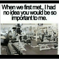 Funny, Gym, and Love: When first met, Ihad  no idea you would be so  important to me Follow ⏩@AESTHETICELITE ⏪ for Motivation 💪😎 . @AESTHETICELITE 💯 @AESTHETICELITE 💯 @AESTHETICELITE 💯 . workout bodybuilding crossfit strong motivation instalike powerlifting bench deadlift squat squats gymmemes gymhumor love funny instamood gymmotivation jokes legday girlswholift fitchick fitspo gym fitness bossgirls