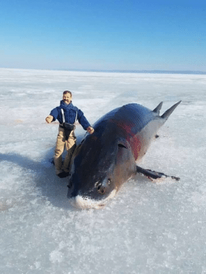 When fishing, always bring an action figure: When fishing, always bring an action figure