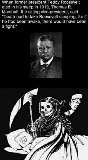 "vice: When former president Teddy Roosevelt  died in his sleep in 1919, Thomas R.  Marshall, the sitting vice-president, said  ""Death had to take Roosevelt sleeping, for if  he had been awake, there would have been  a fight."""