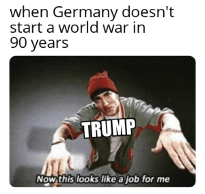 Everyone just follow me: when Germany doesn't  start a world war in  90 years  TRUMP  Now this looks like a job for me Everyone just follow me